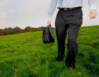Un empleo verde satisface la demanda de desarrollo sostenible. (foto tomada de Universia)