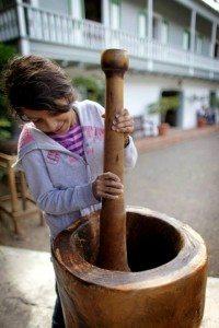 Niña participa del proceso de elaboración del café en la Hacienda Buena Vista, en Ponce.