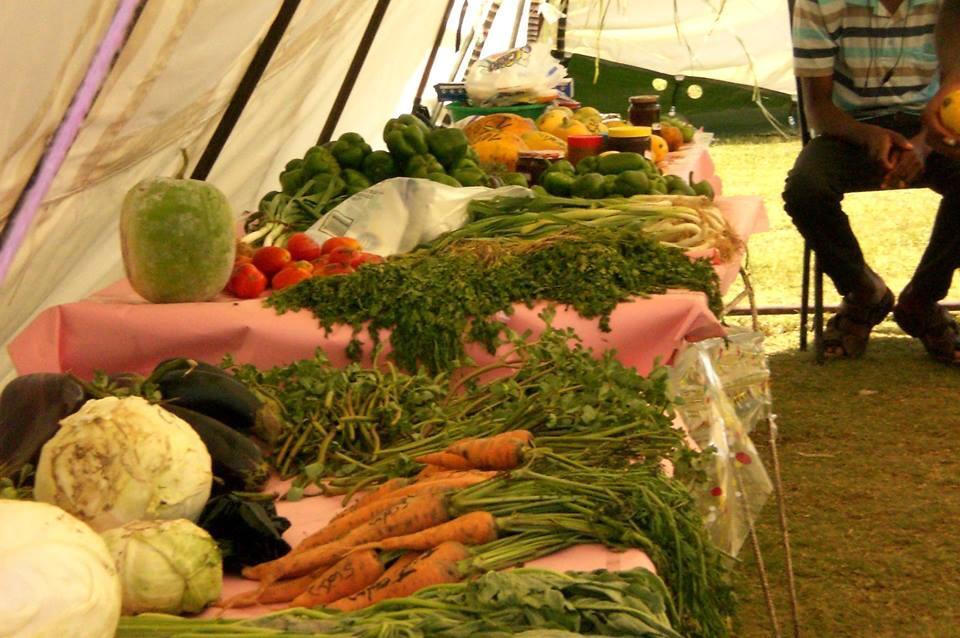 Vegetales son del mercado que hacen en la comunidad gracias a lo que están sembrando, con la composta que han hecho gracias a los inodoros ecológicos.