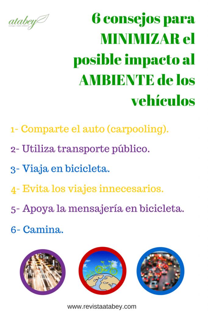 infografía seis consejos para minimizar el posible