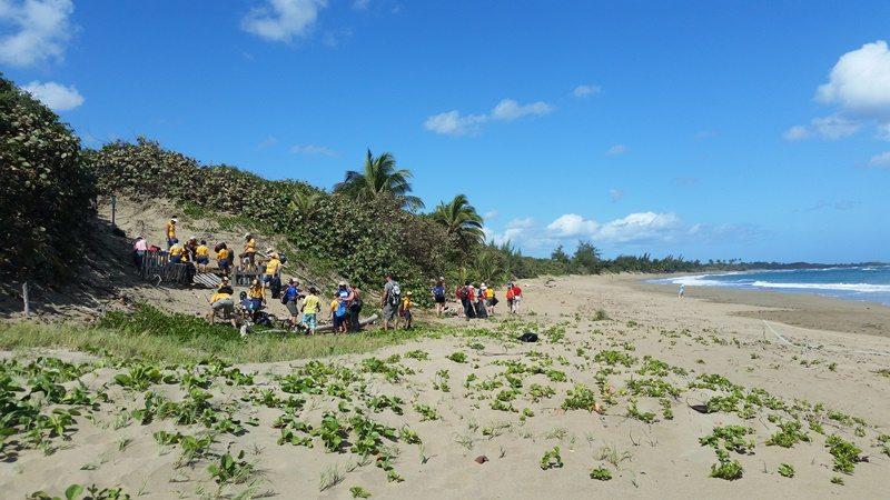 Voluntarios trabajando en la limpieza del área costera.