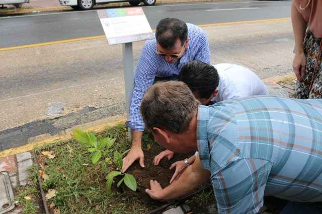 El proyecto de alfabetización ecológica contribuye a la educación de ciudadanos conscientes sobre la importancia de proteger y sembrar árboles, así como a fortalecer un corredor de biodiversidad en la capital.