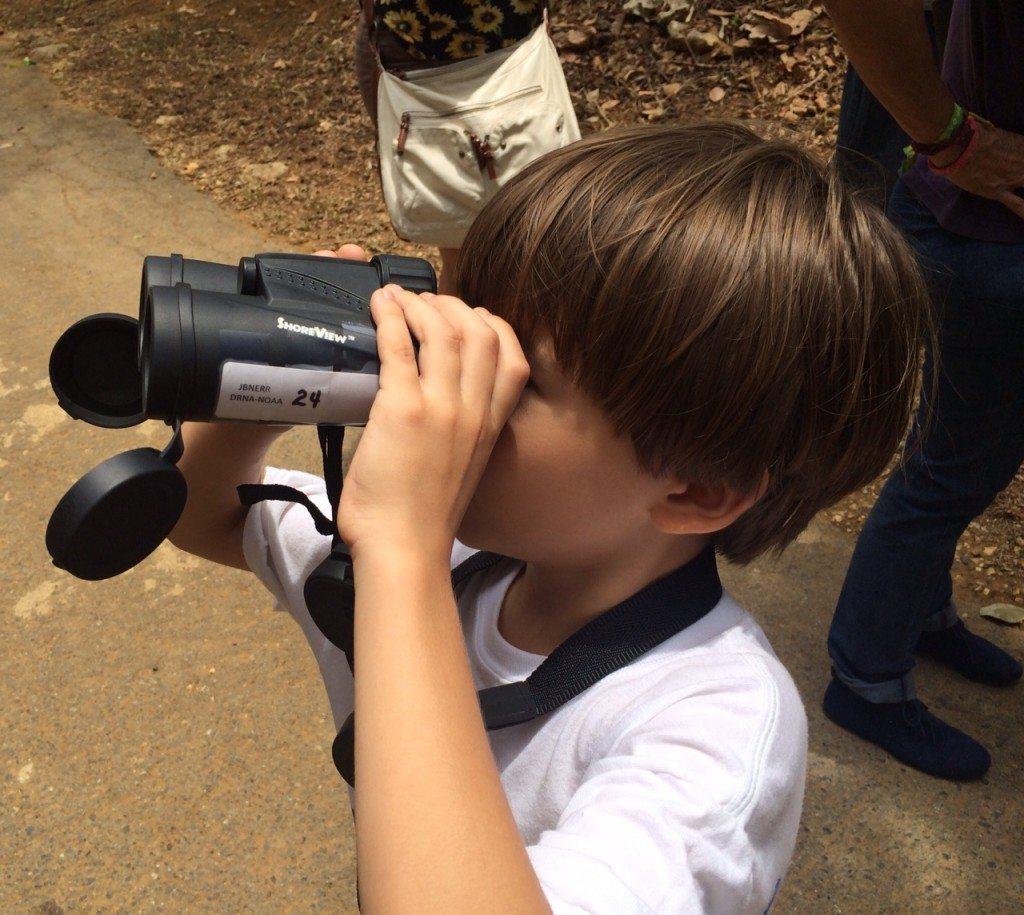 Niño observando aves en el Centro Ornitológico de Puerto Rico, ubicado en el Bosque Estatal de Cambalache, entre Arecibo y Barceloneta. (fotos suministradas)