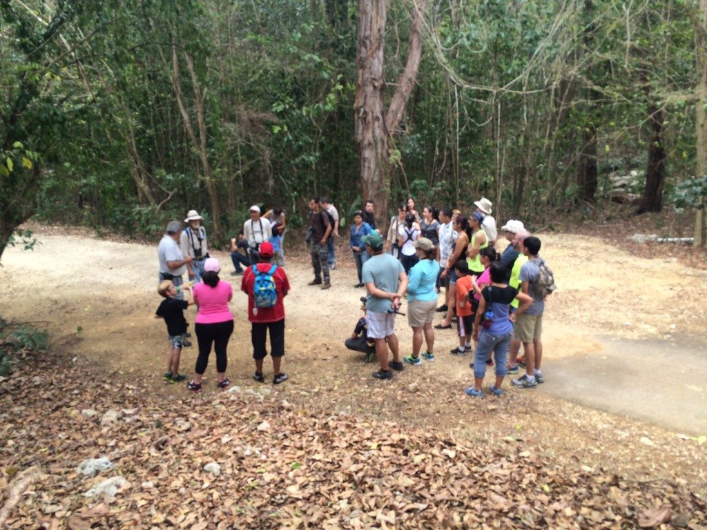 Grupo de personas recorriendo el bosque.