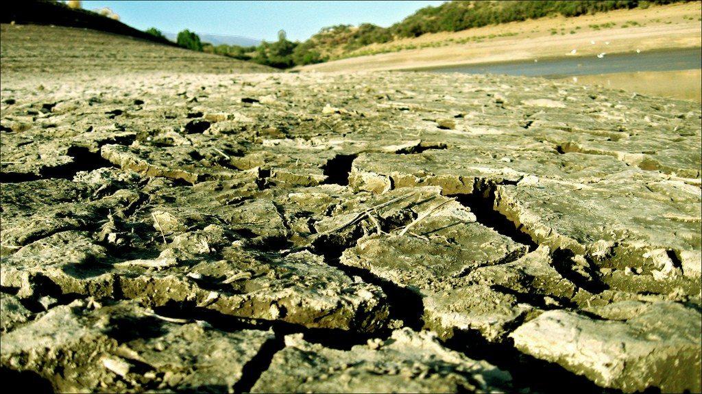 sequía por Patricia Alim Riquelme Wolpat