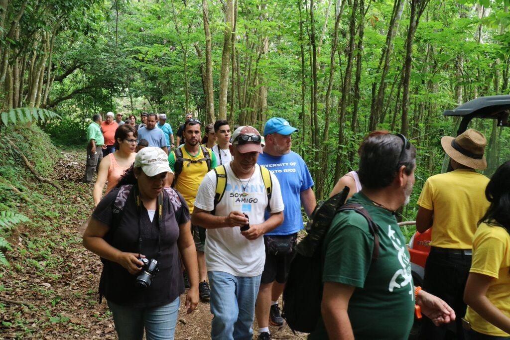 Varias personas caminando por una de las veredas del Bosque Estatal de Monte Choca, en Corozal. (fotos suministradas)