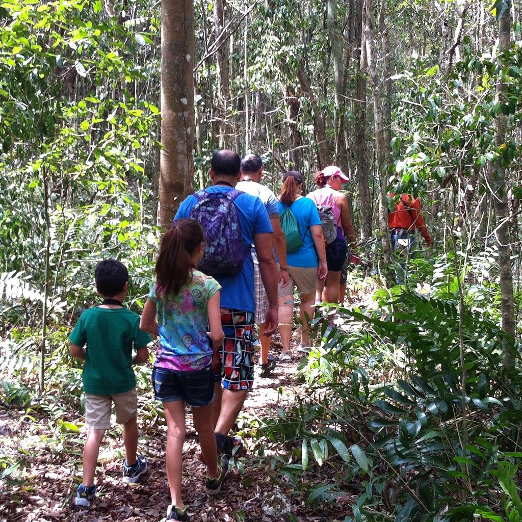 En el Bosque Estatal de Cambalache caminan por las veredas, observan aves y conocen la flora y fauna nativa y autóctona de la zona del karso.