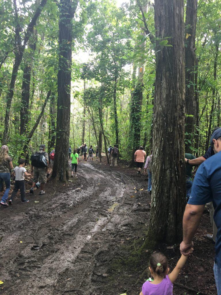 La vereda Frank H. Wadsworth fue nombrada así en honor al dasónomo que hizo a Puerto Rico su casa y ha aportado a la causa ambiental de la isla.