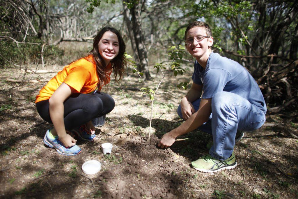 Siembra de árboles por jóvenes voluntarios en el bosque de Salinas Fortuna.