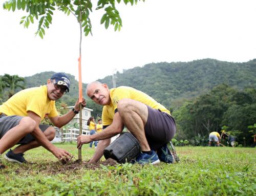 Para La Naturaleza se une al movimiento #UnDíaParaDar para reforestar a Puerto Rico