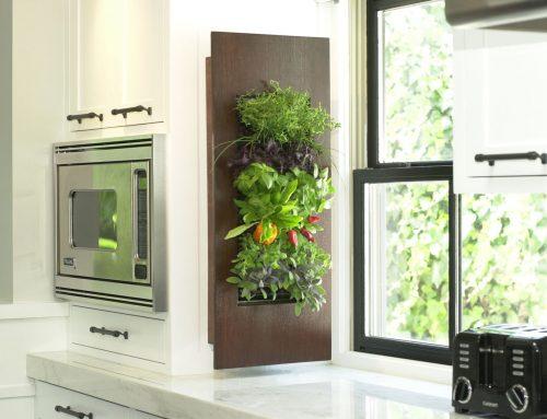 Tres estilos prácticos y ecoamigables para decorar tu hogar